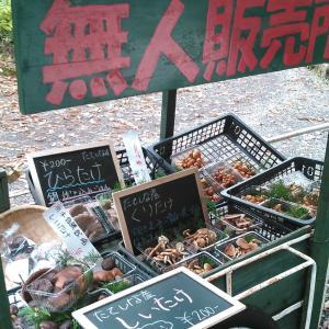 農業で副業?家庭菜園が収入になる、無人販売所の紹介