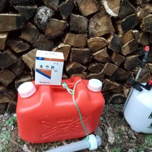 木材の防虫・防腐剤としてホウ酸塩を使用 カビた薪で効果を検証する