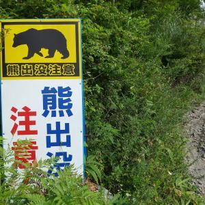 八ケ岳には熊が少ないって思ってたんですけど【クマ出没注意】って