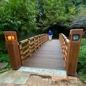 公園の橋 展望台完成