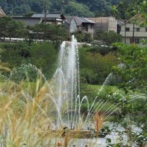 宮ケ瀬ダム その9 園地の噴水 2-2
