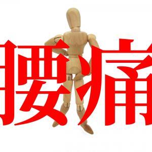 介護現場で腰痛予防ストレッチを広めるための手順