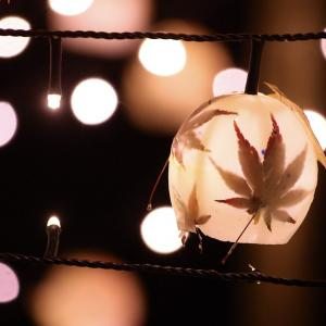今日はカラオケ文化の日・電飾