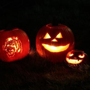 【ハロウィン】パンプキン・カーヴィング(カボチャ彫り)を楽しもう!ジャック・オー・ランタンの造り方を写真入りで解説。