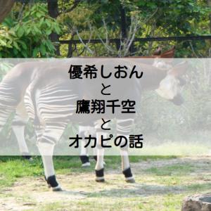 優希しおんと鷹翔千空とオカピの話♪宙組『Dream Time』新MCに期待!