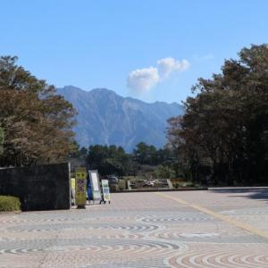 【鹿児島県立吉野公園】は美しい花と桜島を見ることができる公園です