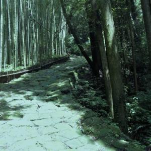 【龍門司坂】は歴史の道百選にも選ばれた苔の石畳が美しい坂道