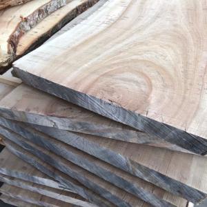 【木材の知識】散孔材と環孔材の違いについて