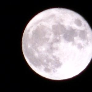 名月 撮影