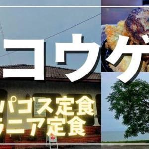 【彦根市】ライダーに大人気!カフェレスト・コウゲ【デカ盛り】