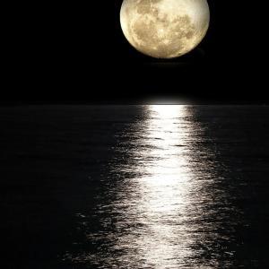 満月パワーを活かすには。。。