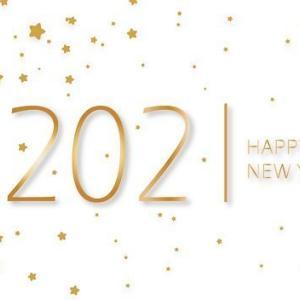 2020年の振り返りとか*新年の抱負とか