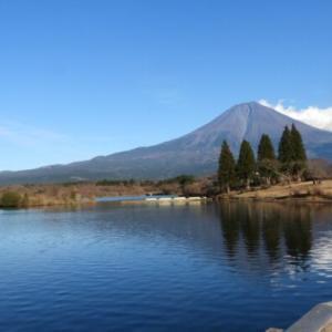 長者ヶ岳から田貫湖一周 続き