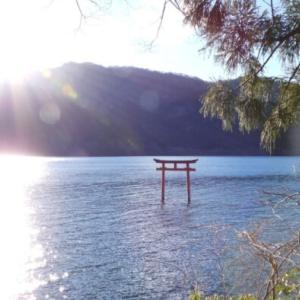 探鳥旅 箱根芦ノ湖の続き