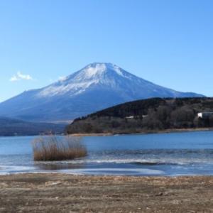 MTBで山中湖ぐるり探鳥 #2