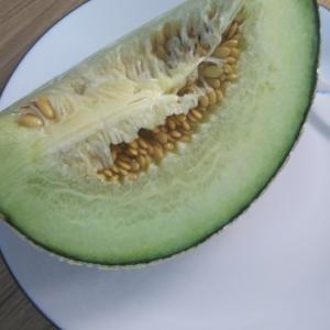 韓国の果物~なつかしい味~