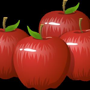 りんごとゆで卵ダイエット三日目