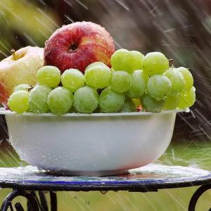 りんごとゆで卵ダイエット二十五日目
