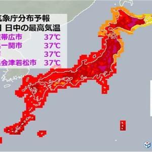 18日現在、帯広37℃札幌34℃ マラソン北海道でやる意味あんの?