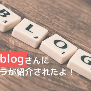 tsenblogで姉妹サイト「ブロフラ」が紹介されました!