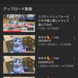 YouTuber【ねこおでん】さんの動画をチュールボーイずが紹介してみた!!