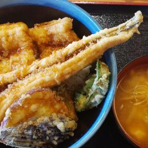 アナゴ天丼