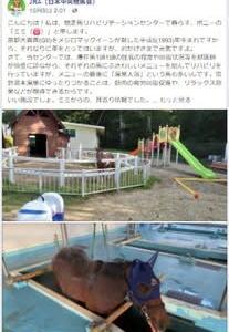 JRA(日本中央競馬会)FB