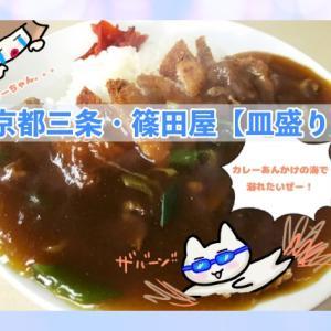 突然の飯テロ【京都ランチ】京阪三条にきたら篠田屋の【皿盛り】をたべてみてね