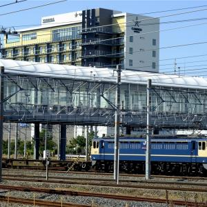 JR岸辺駅にて国鉄色のEF65-2083号機を撮影!(2020年10月13日)