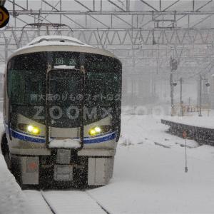 JR西日本『冬の関西1デイパス』で再び余呉・敦賀へ!