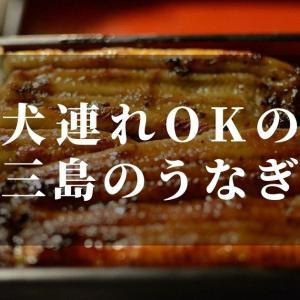 三島でうなぎが食べたい!犬連れでも入れるお店はここだ!!