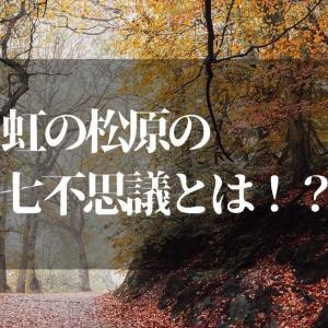 虹の松原の七不思議はこれだ!!【佐賀県民なら知ってて当たり前!?】