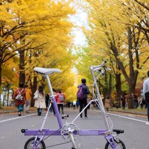 紅葉の札幌をキャリーミーでぽたって来ました♫