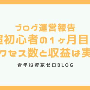 【ブログ運営報告】超初心者の1ヶ月目のアクセス数と収益は実は