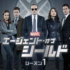アベンジャーズにどハマりしたら絶対見て!!!「Agents of S.H.I.E.L.D シーズン1」 #9