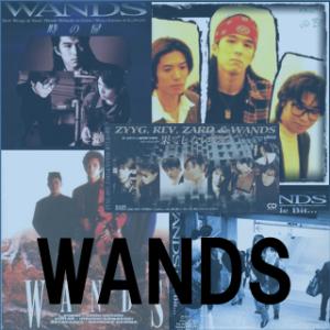 神声、神歌で名曲揃い『WANDS』の私選ランキングトップ30の話。