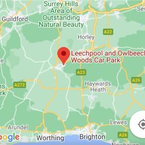 【イギリス・ハイキング】ウエストサセックス/リーチプール・アウルビーチ (Leechpool and Owlbeech Woods)