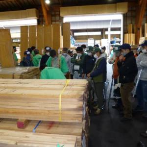 岐阜県の檜の競り
