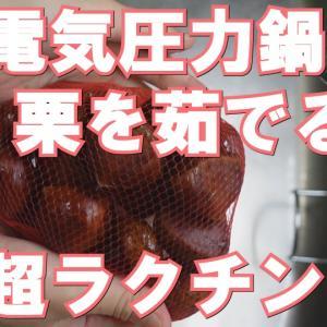 電気圧力鍋で栗を茹でると超ラクチン~圧力時間とやり方~