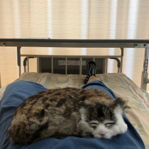 ④ドッキドキの入院初日