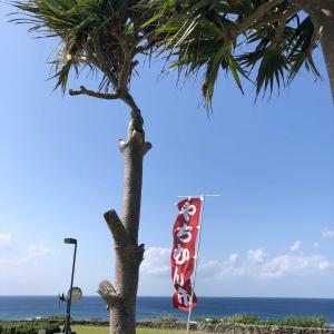 買いましょうね〜沖縄 #2ーやちむん市@Gala 青い海
