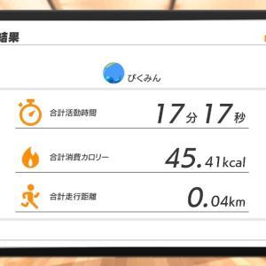ダイエット記録44日目
