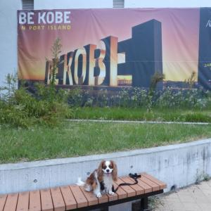 2代目BE KOBE