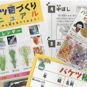 今年もきた!バケツ稲の申し込みは3月8日から!【最高の食育】