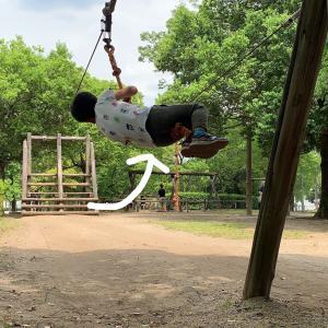 【しらこばと運動公園】木陰に佇むアスレチック!暑い夏でも元気に遊ぼう!