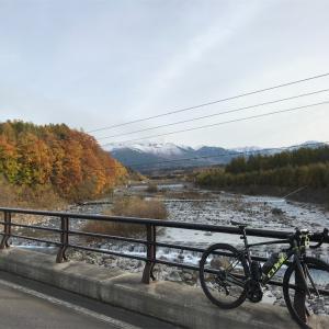 10月21日(水)美瑛紅葉見るやつ