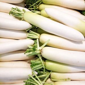 大根で簡単楽々 健康的に痩せる方法