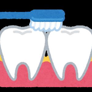 歯医者さんに褒められた綺麗にする道具