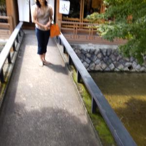 京都、人混み避けてあさんぽ