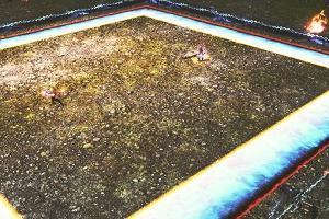 FF14 ザトゥノル高原「戦果2倍チャンス」方法は?観戦するだけ